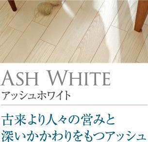 アッシュホワイト